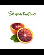Selezione e vendita arance polpa rossa Sicilia