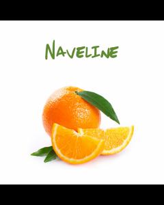 Arance polpa bionda, bianca di Sicilia, varietà Naveline