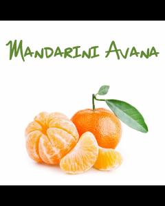 Mandarini Sicilia, vendita online